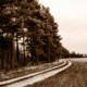 jarná cesta