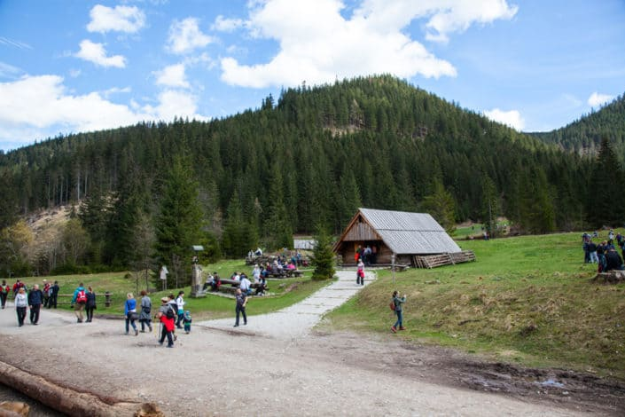 chocholowska dolina 31